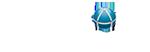 Skelton Internet Marketing Company Logo
